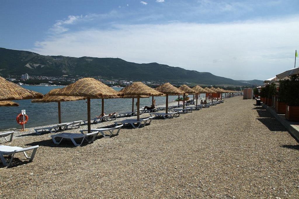 динатронный эффект геленджик пляж сады морей фото поздравления